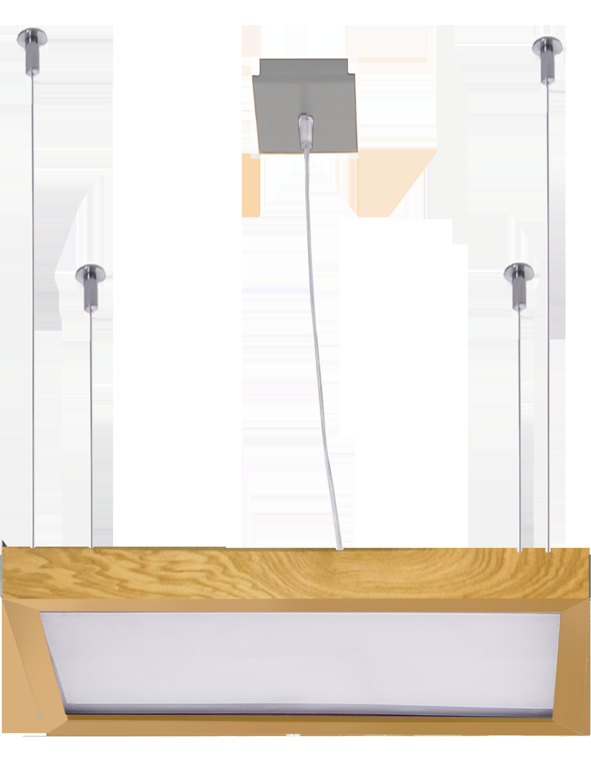 Светильник подвесной LEDER  BS556/HR625x325